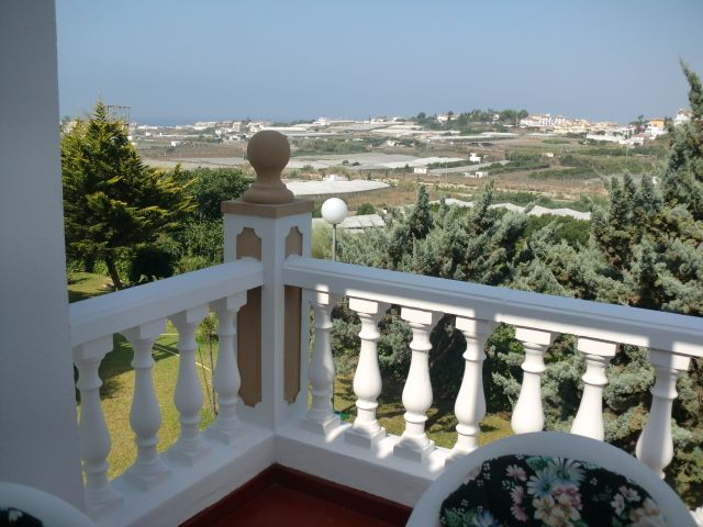 view from the terrace and