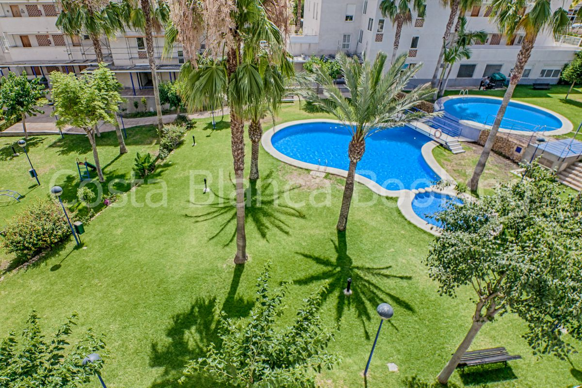 SPACIOUS APARTMENT IN THE CENTER OF ALBIR