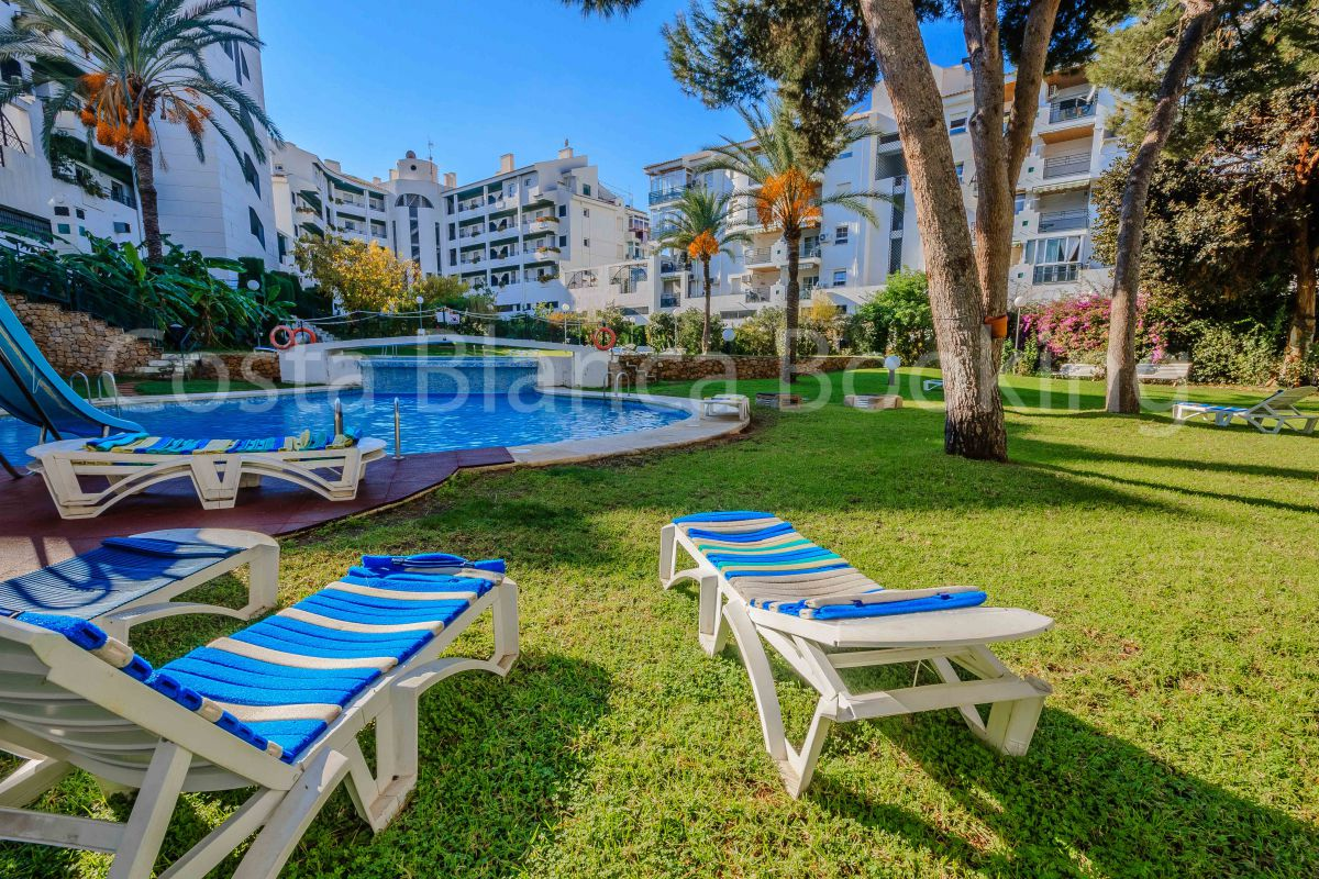 VERY CENTRAL APARTMENT WITH POOL IN ALBIR