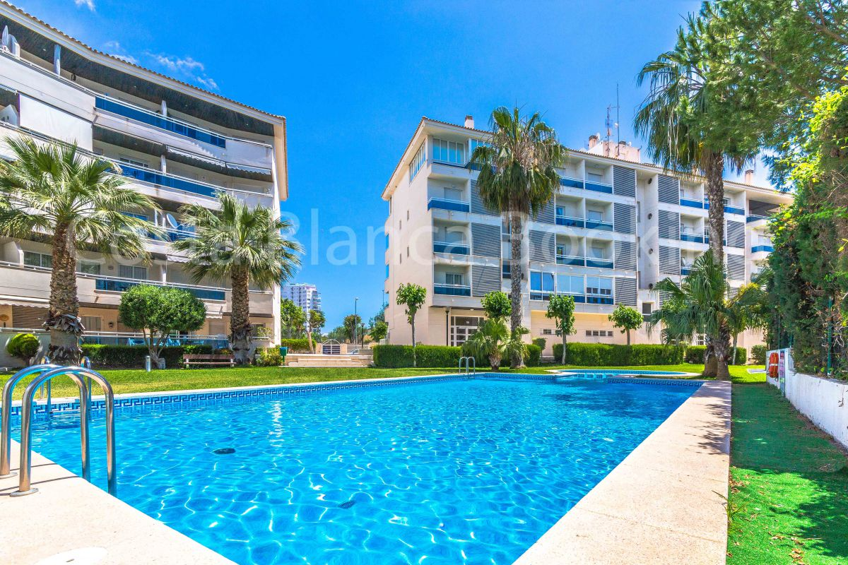 MAGNIFICENT APARTMENT A STEP FROM THE BEACH OF ALBIR