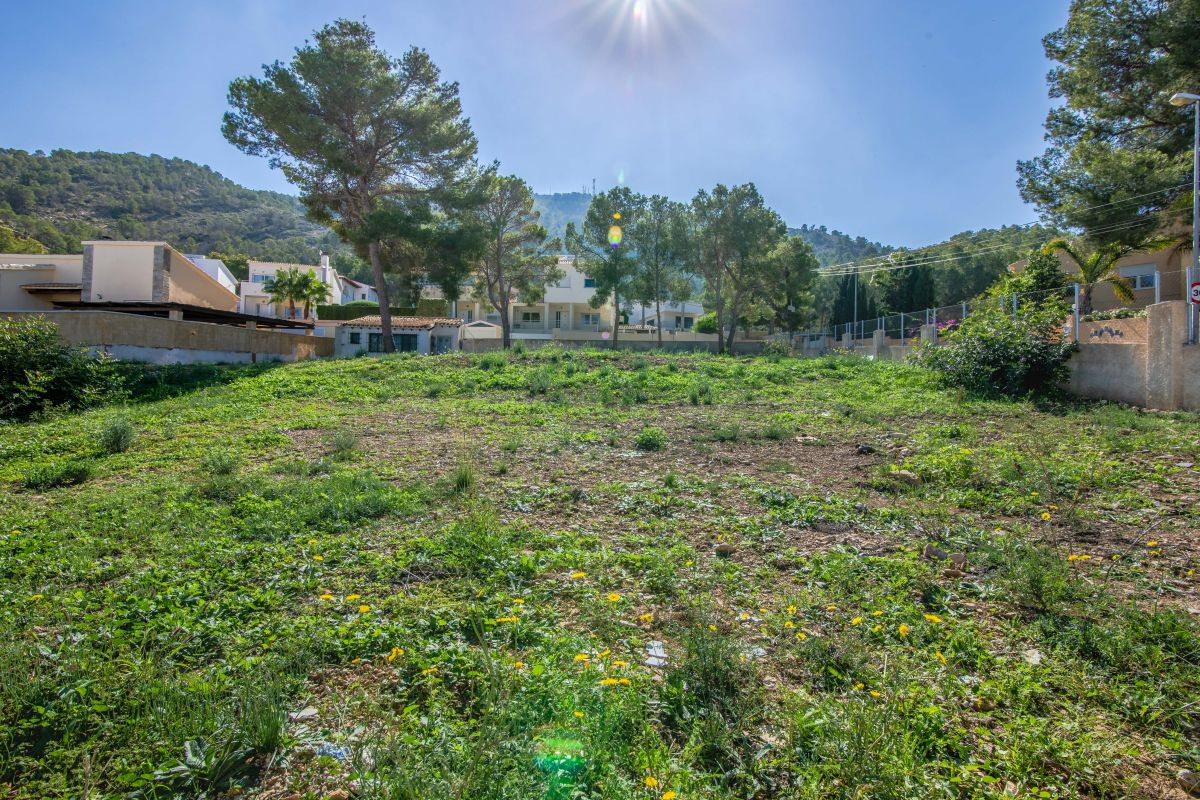 FANTASTIC PLOT IN ALBIR
